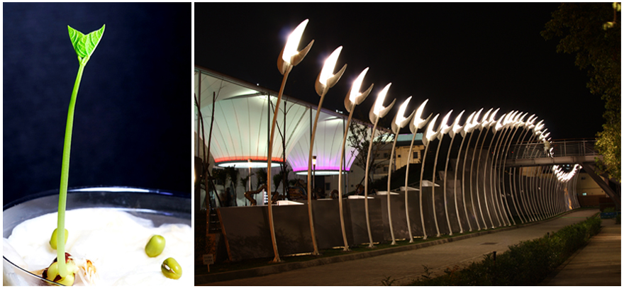artistic lighting and designs. the bicycle path behind dadong arts center and warm white light color shines on building brings more artistic atmosphere into environment lighting designs